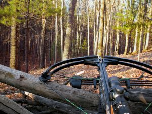 Top 3 Best Crossbow for Home Defense