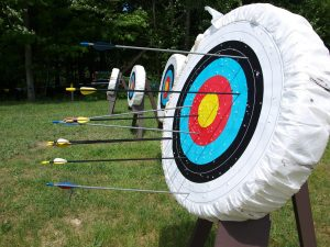 Top 3 Best Bag Archery Targets