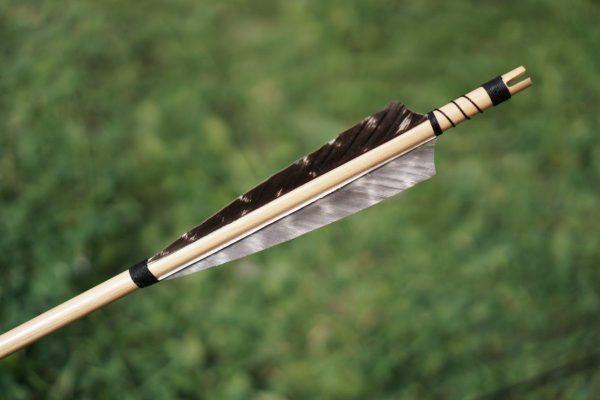 Why Do Arrows Bend in Archery?