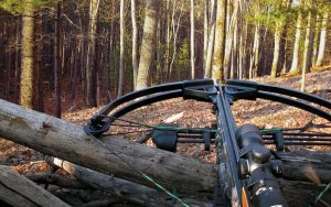 How to Sharpen Broadheads