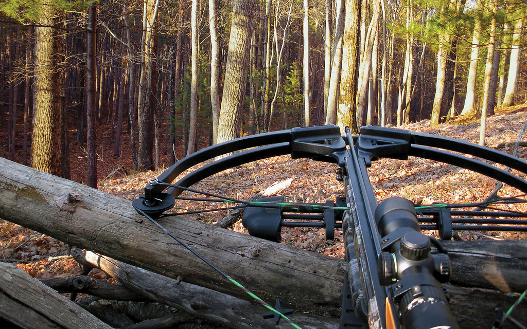 Best Crossbow for Treestand Hunting